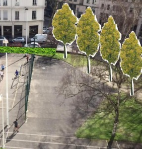 arbres AF-jpg
